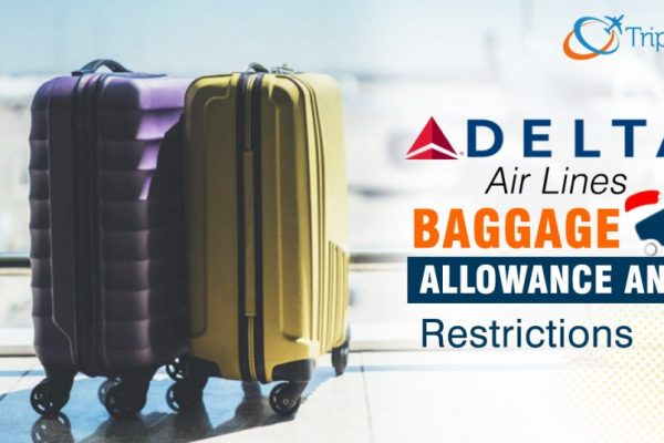 How Much Is Baggage Check For Delta